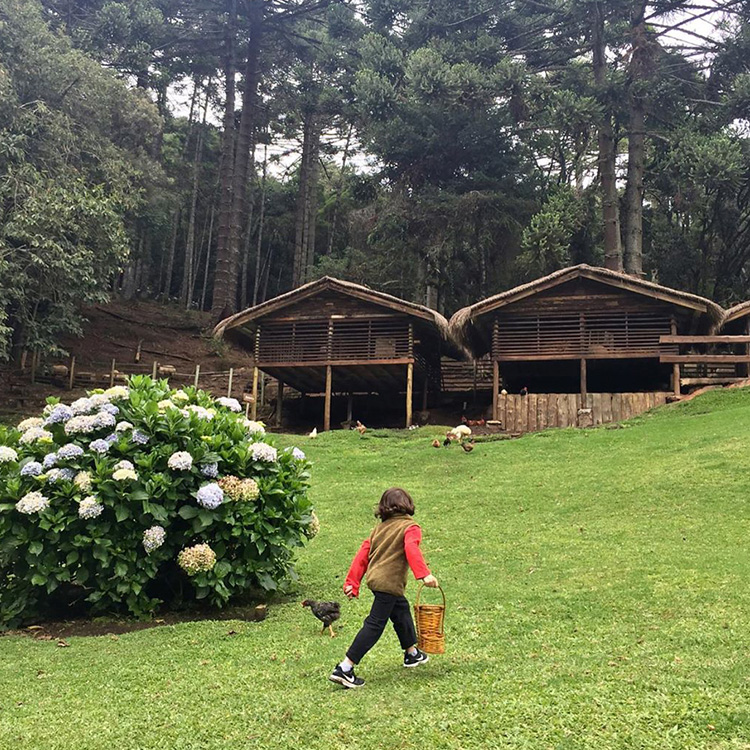 O que as crianças aprendem durante uma viagem Agência Pequenos Exploradores It Mãe