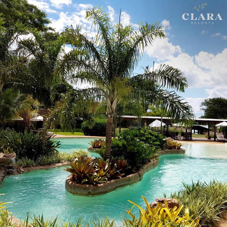 Curtir o fim do isolamento social com as crianças Clara Resorts Pequenos Exploradores It Mãe
