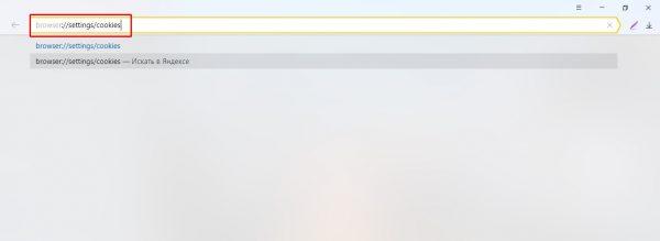 如何在Yandex浏览器中打开cookie管理