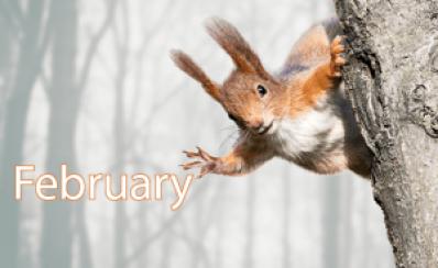 February 2017 Technology News