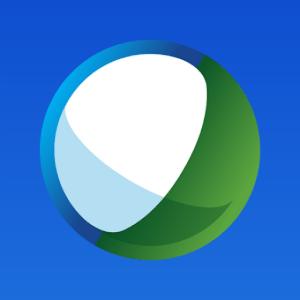 WebEx ball