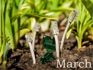 March Magic Mushrooms