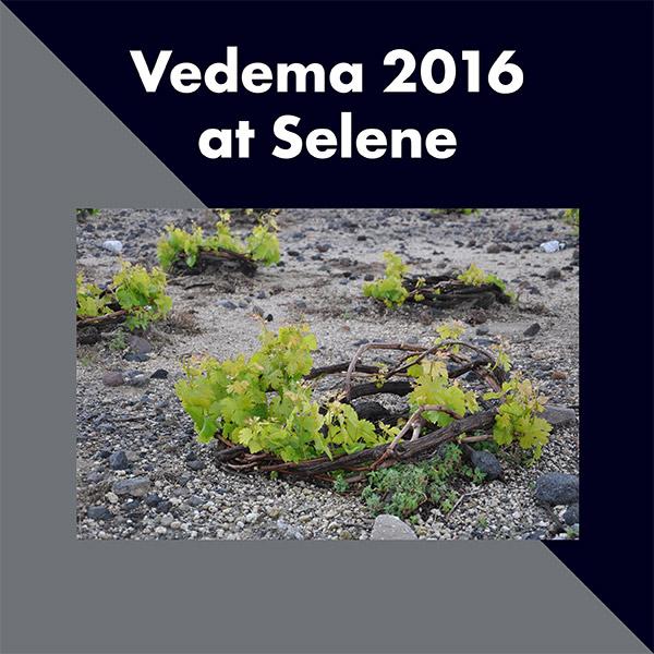 Επιτυχημένη η Vedema στην Σαντορίνη