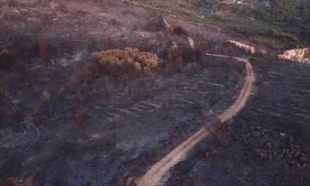 Ζάκυνθος: Εθνικό Αστεροσκοπείο | Η καμένη έκταση από την πρόσφατη πυρκαγιά εκτιμάται σε 7.470 στρέμματα