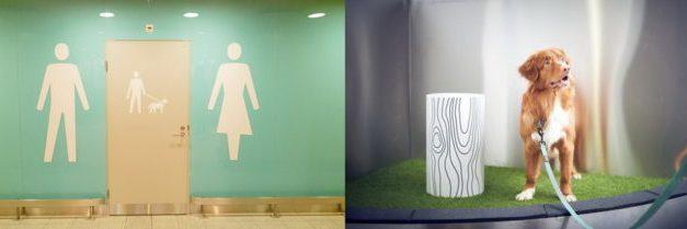 Αυτή η χώρα προσφέρει στο αεροδρόμιο τις τουαλέτες για κατοικίδια