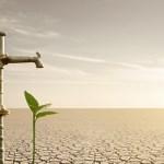 WWF  Διεθνές συνέδριο για το περιβαλλοντικό δίκαιο σε καιρούς κρίσης