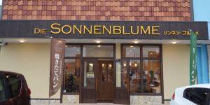 sonnenblume - 1