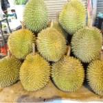 【マレーシア旅行】初体験!  南国フルーツ(ナンカ、リュウガン、ランブータン、ドリアン)