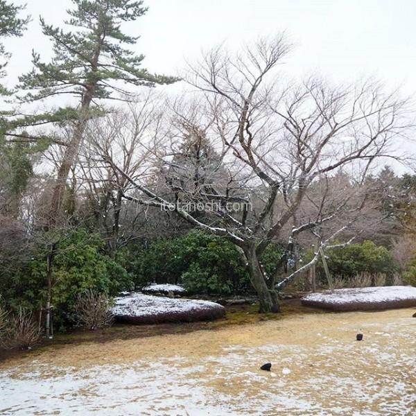 箱根に女子旅♪ 一昨日の雪が残っていました。今晩も雪が降るみたい。硫黄泉のお風呂が楽しみ。