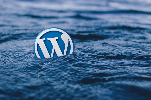 Instagram Feed on WordPress by Top Two WordPress Plugins