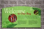 Welcome to Our Bog