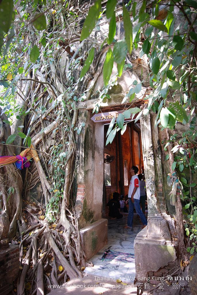 《泰國夜功府景點》樹中廟、娜娜廟、黑王像、泰拳公園