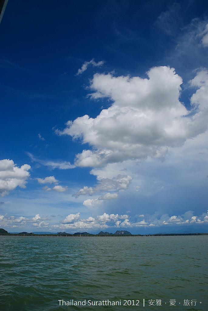 泰國 蘇叻他尼 │ 輕綠旅行走訪,海上觀光牧場 Sinmana Farmstay