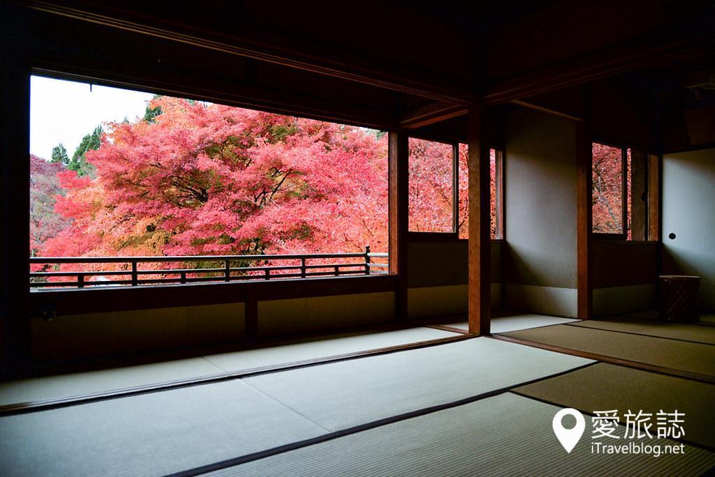 京都賞楓景點 琉璃光院 11