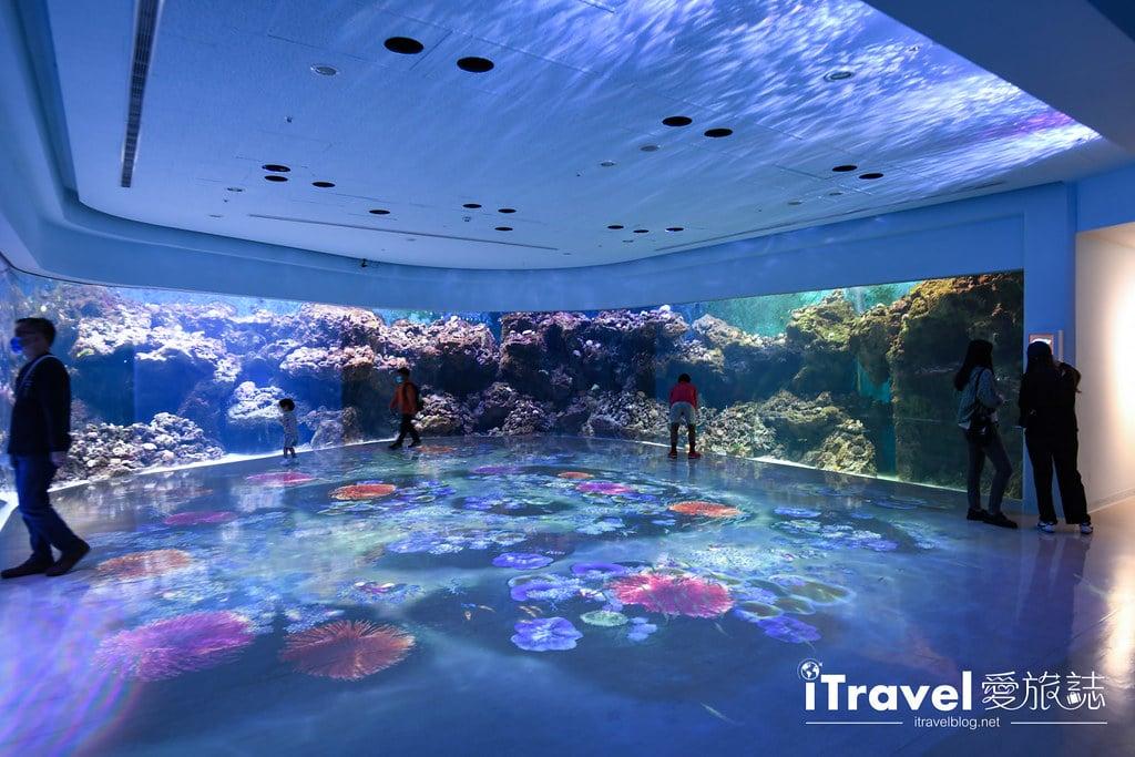 桃園八景島水族館 Xpark (18)