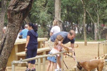Το πρώτο πάρκο για σκύλους ήρθε στην Κρήτη - iTravelling