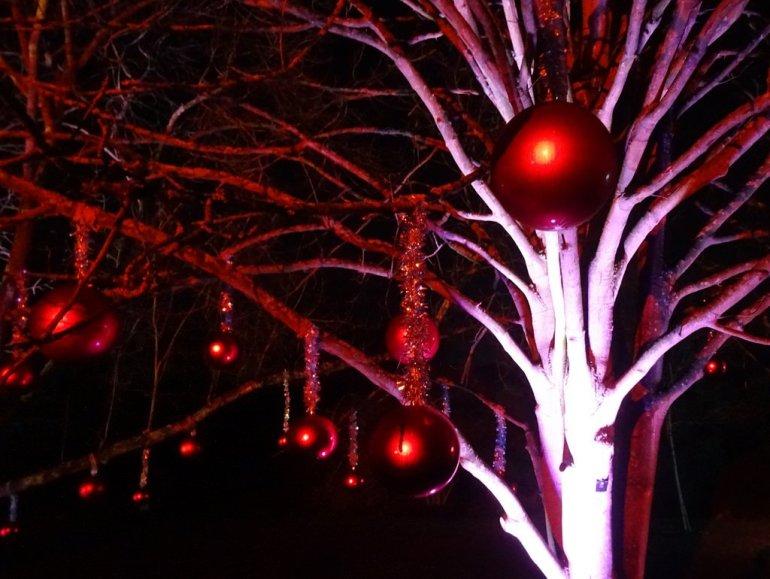 Κήπος Kew – Royal Botanic Gardens: Μια χριστουγεννιάτικη βόλτα στο Λονδίνο - itravelling.gr