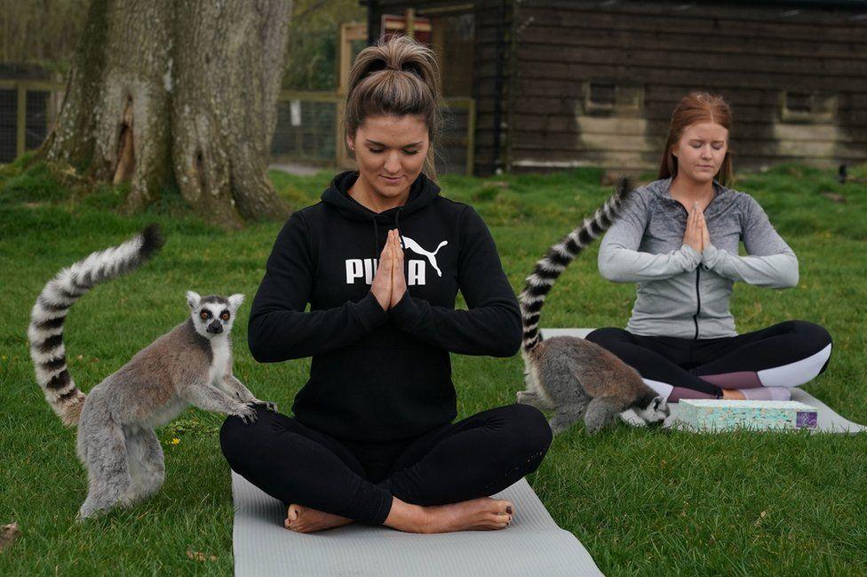 Lemoga: Πάμε για yoga με τον βασιλιά Τζούλιαν στην Αγγλία - itravelling.gr