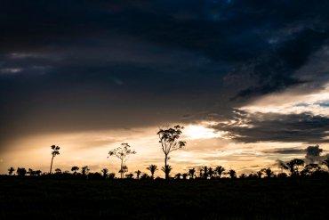 Ταξιδεύουμε στον Αμαζόνιο μέσα από τον Nikon φακό του Sebastián - itravelling.gr