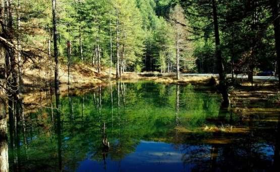Ζορίκα: Η λίμνη με τα νούφαρα σε περιμένει για βόλτες στο δάσος - itravelling.gr