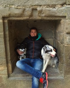 Dogs in Carcassonne