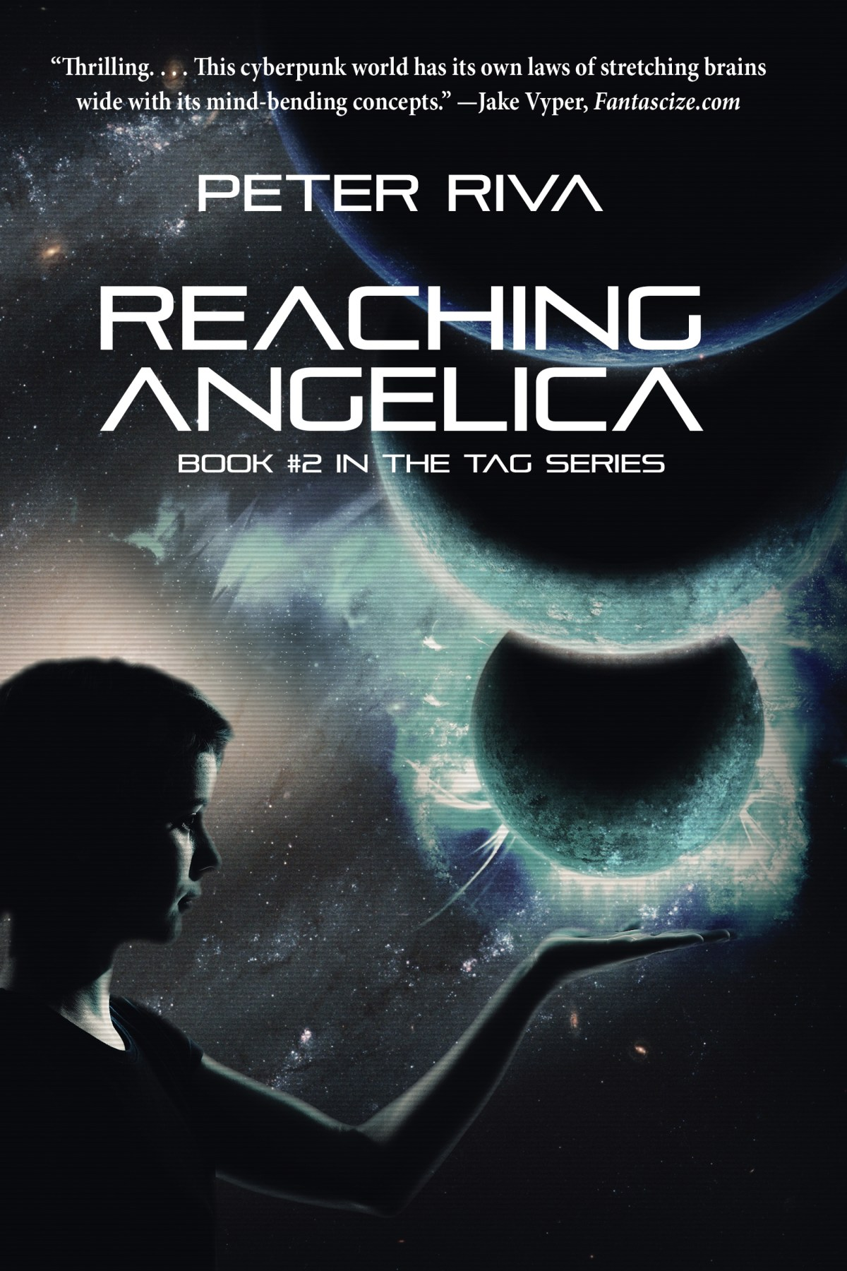 Reaching Angelica Book