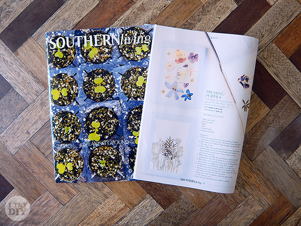 I Try DIY | Pressed Flowers Feature in Southern Living