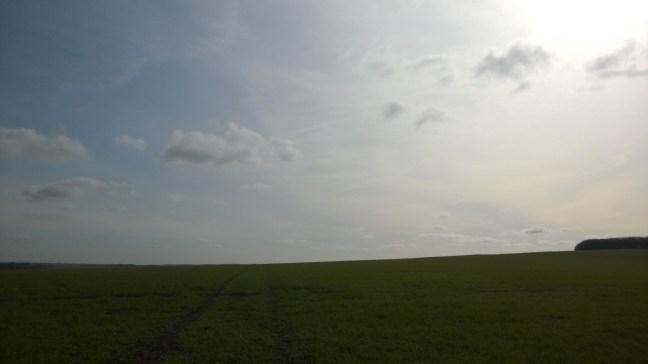 Big sky, big field.
