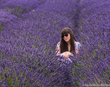 lavender-farm-very-dress-25