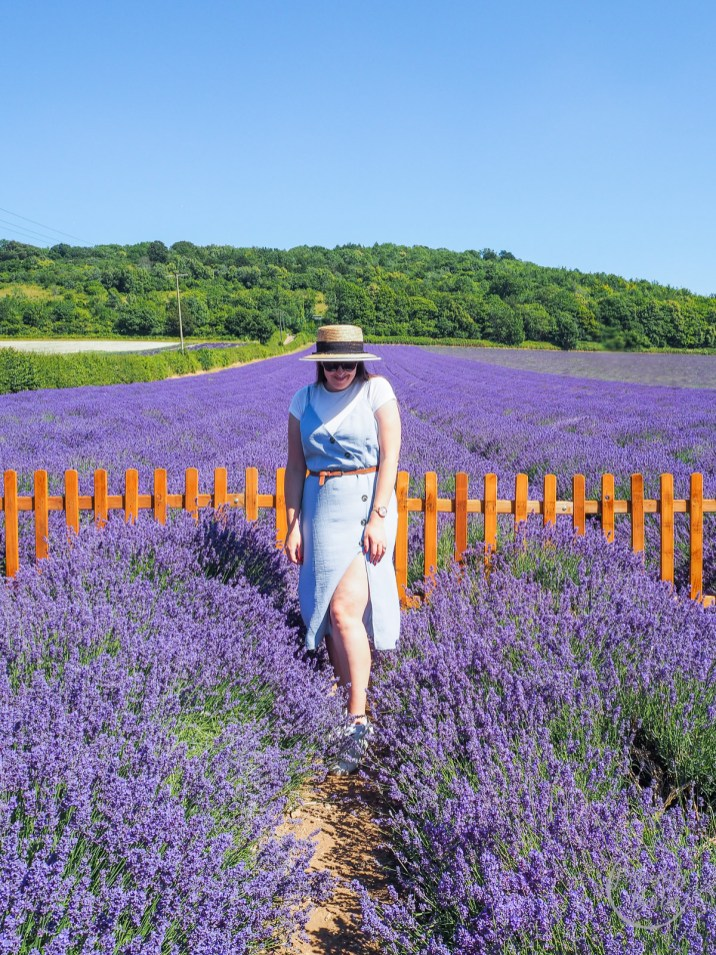 Lavender, Kentish Lavender, Lavender Fields, Kent Life, Kent, Fashion Blogger, Style Post, Primark Dress, Styling A Primark Dress, Button-Down Dress, Summer Style, Dress, Straw Hat, fashion, Affordable Fashion