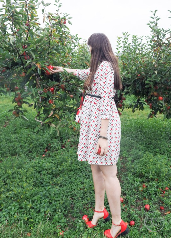 Snow White, Cath Kidston, Disney x Cath Kidston, #DisneyxCathKidston, Apple Picking, Apple Tree, Apples, Disney, Style Post, Autumn Style, Fashionista Barbie, UK Style Blogger, Style Post