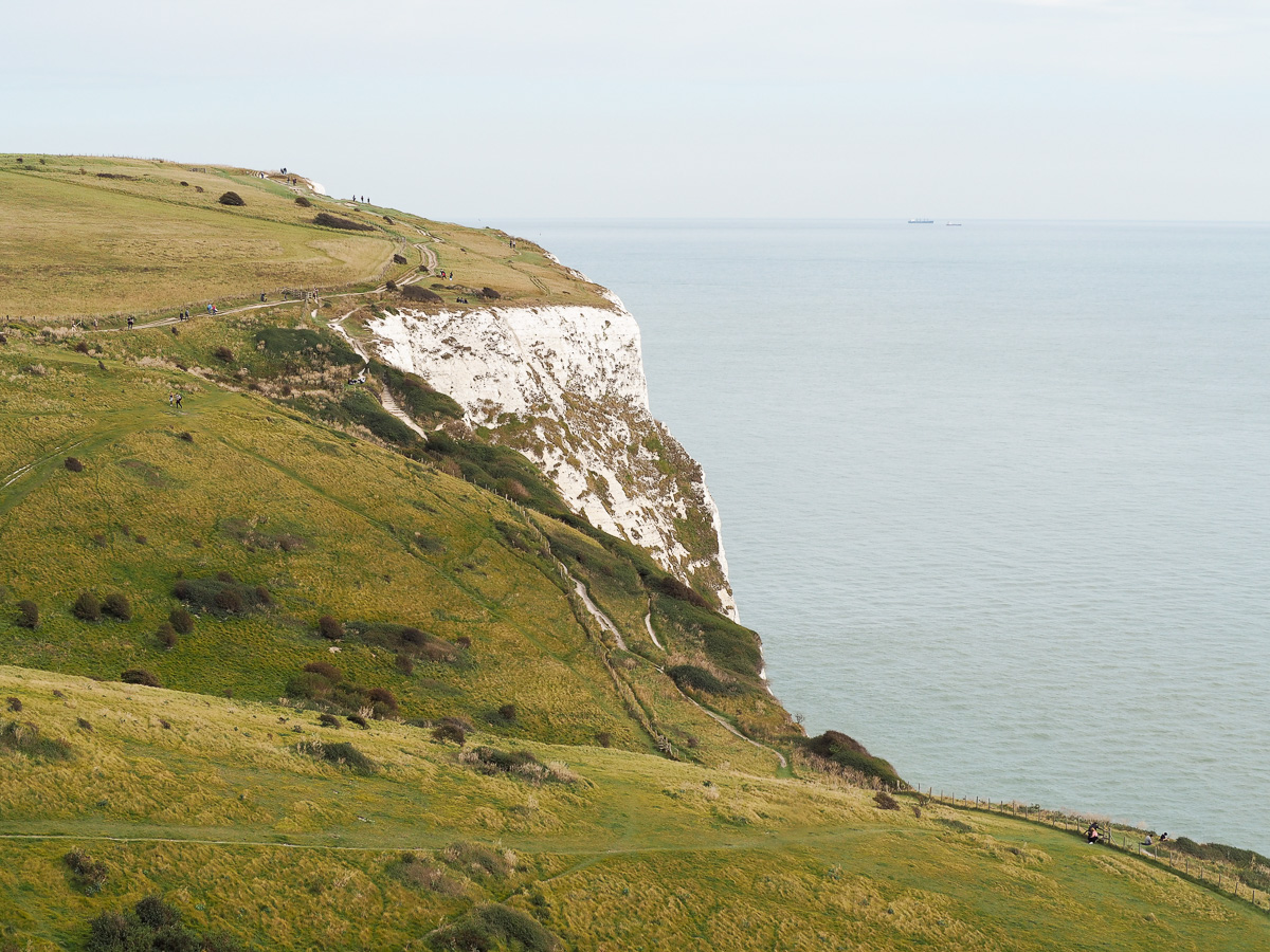 White Cliffs of Dover, National Trust, UK Tourist Attraction, Dog Walk, Kent, Dog Walks of Kent