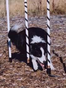 2004-15