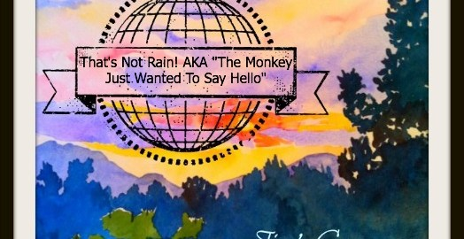 That Is Not Rain That Is A Monkey – Jim's Corner