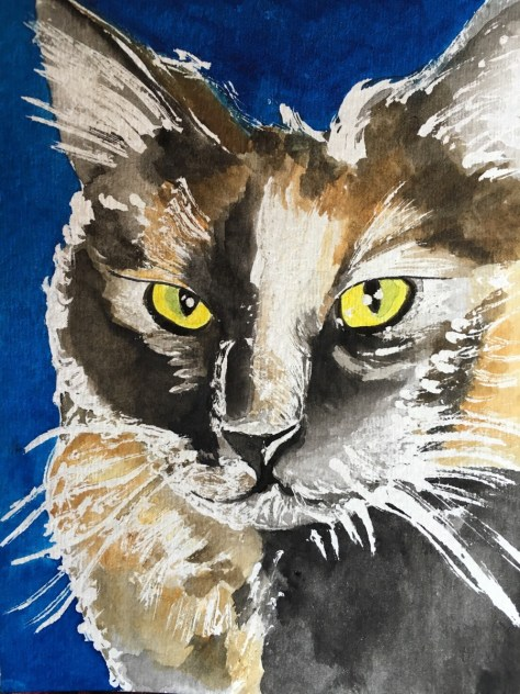 cats painted in watercolor day 14 September 2016