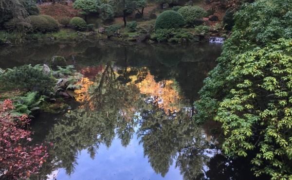 top gardens to visit portland japanese garden