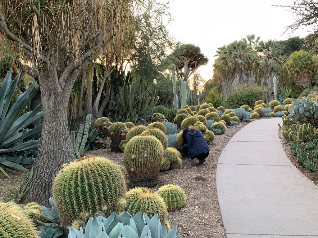 huntginton garden top gardens to visit