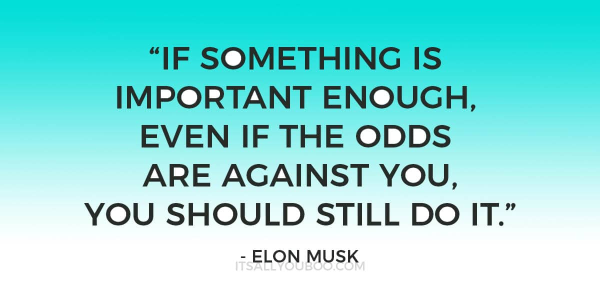 """""""If something is important enough, even if the odds are against you, you should still do it."""" - Elon Musk"""