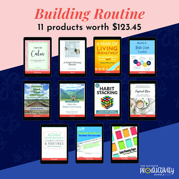 The Ultimate Productivity 2020 Review - Building Routines