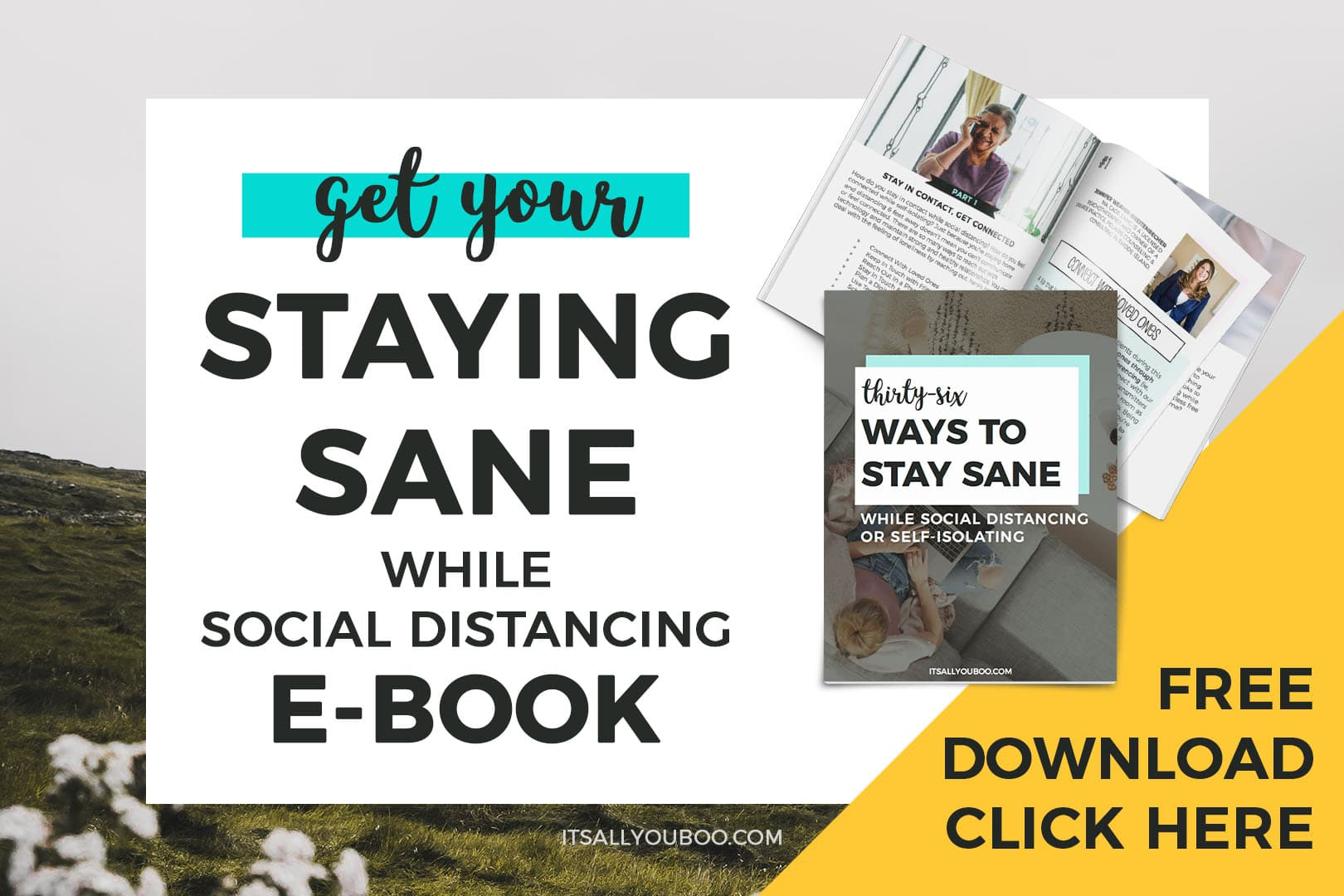 Get your Staying Sane while social distancing ebook