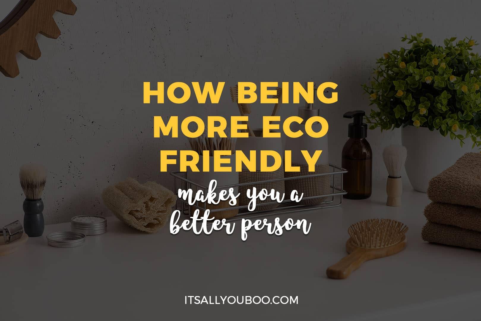 How Being Eco Friendly Makes You a Better Person