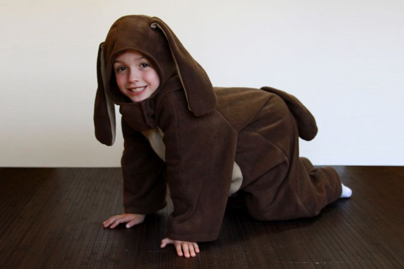 a little boy in a dog costume in front of a white background on a wood floor