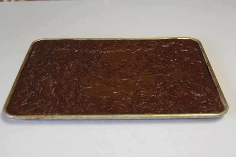 Baked brownies in a cookie sheet