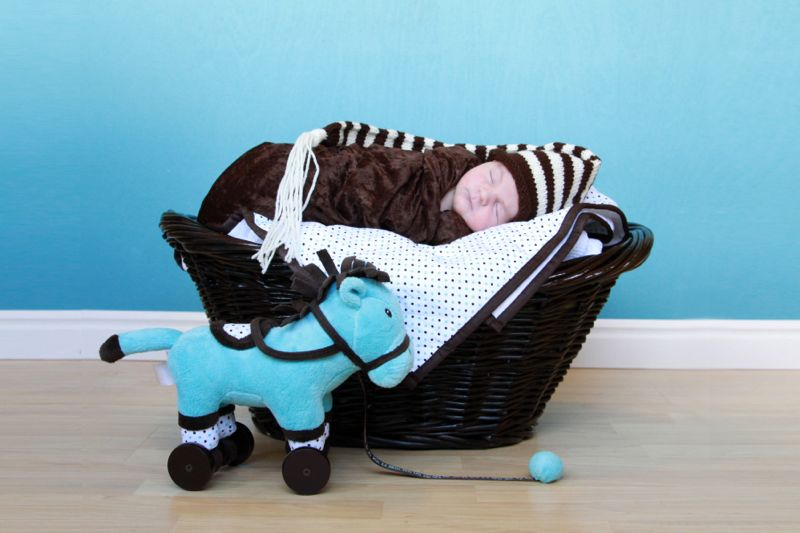 Newborn photo pose: baby wrapped in a blanket, lying in a basket next to a toy horse