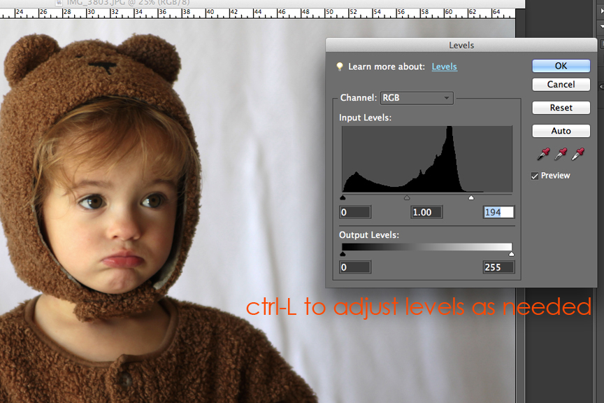 Using the levels box in Photoshop Element to adjust brightness