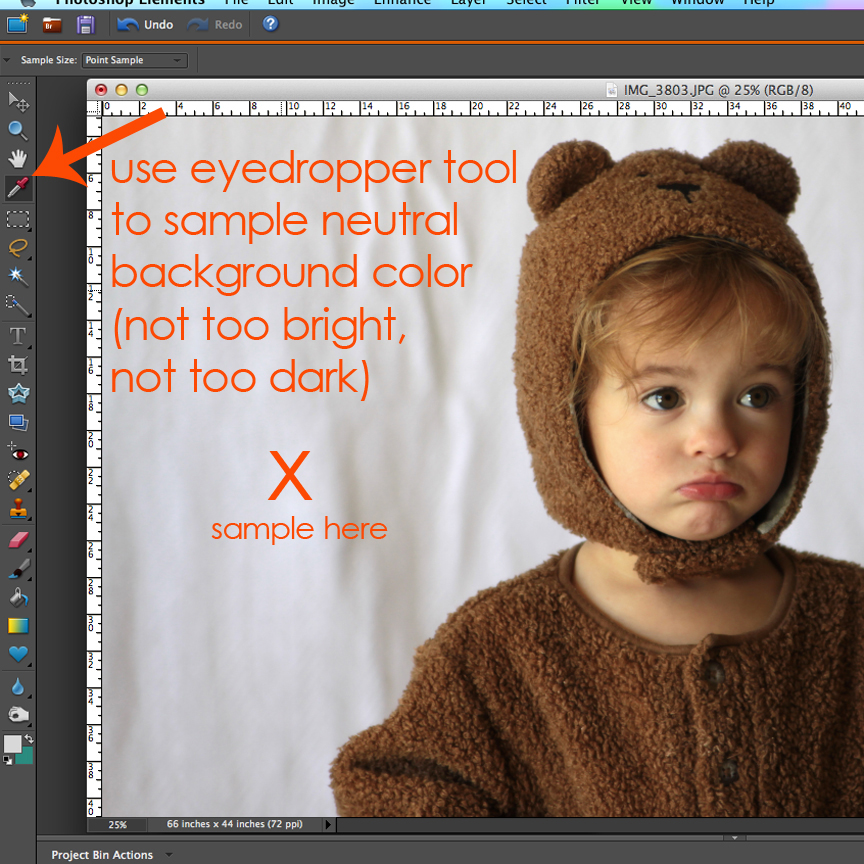 Use eyedropper tool to sample neutral background color, not too bright, not too dark, of the photo of the baby girl
