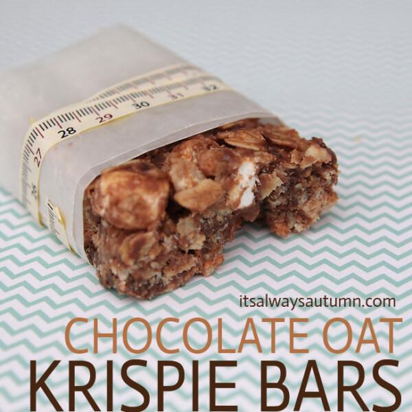 chocolate oat krispie bar