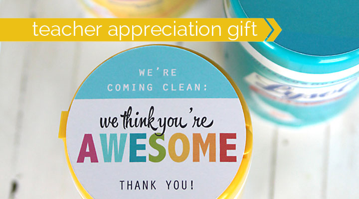 this is a great teacher appreciation gift! sanitizing wipes with cute printable sayings - cheap, easy, and practical.