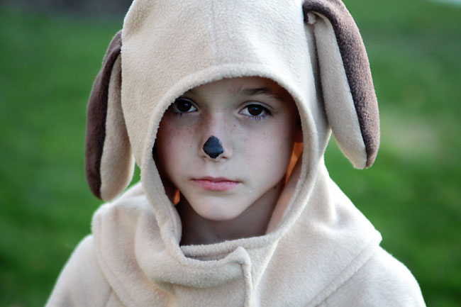 A close up of a boy in a dog costume