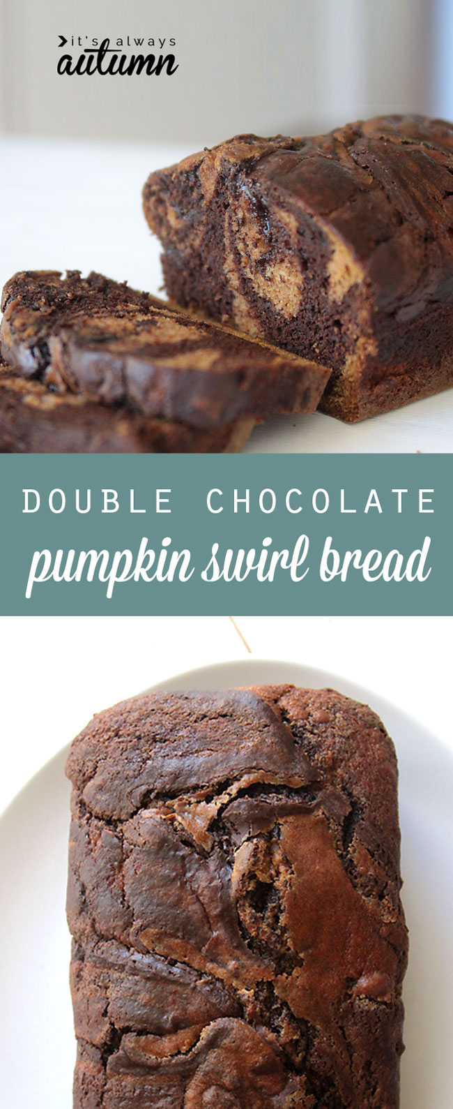 this recipe looks incredible! pumpkin bread swirled with chocolate pumpkin bread and melted chocolate!